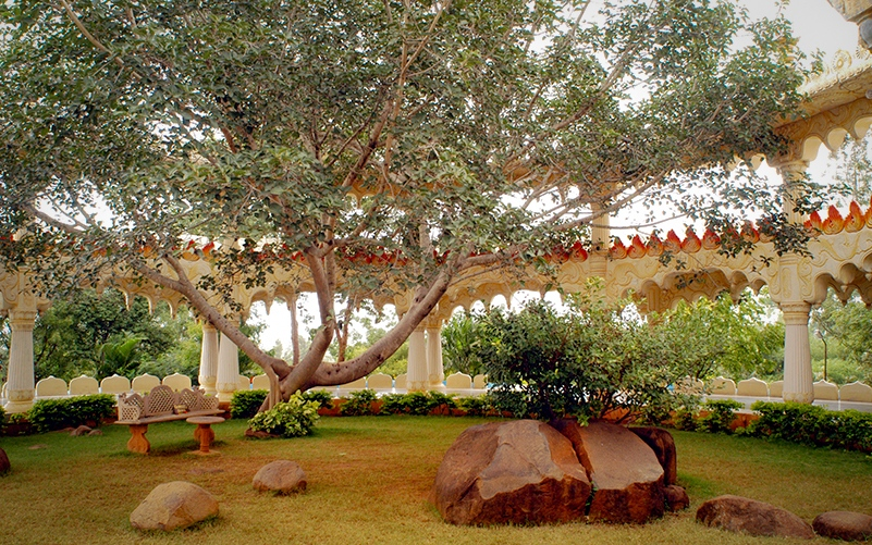 The Art of Living Ashram